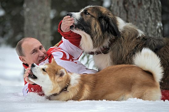 Putin with his dogs