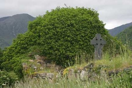 Ruins of the church built by St. Fintan on Eilean Munde, Scotland