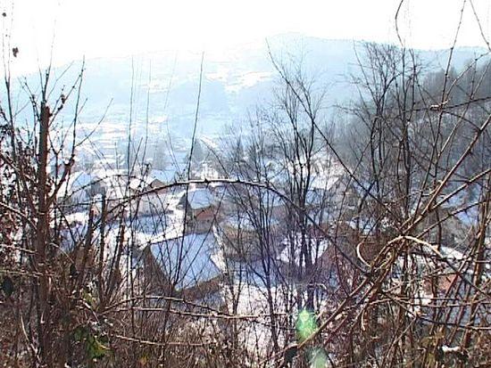 село Кравица