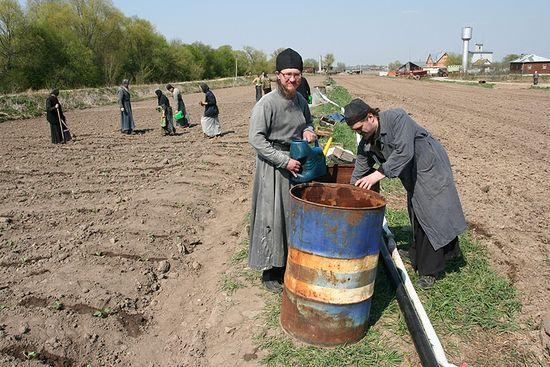 Сельскохозяйственные работы в Оптине