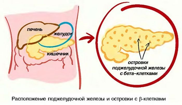 Лекарство от мигрени экседрин цена