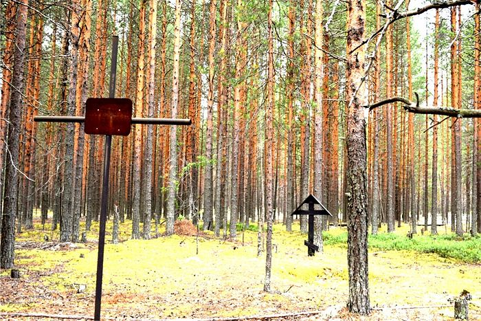 Кладбище «Лесозаводское» поселка Аджером , в котором хоронили заключенных Локчимлага, Пезмогского отдельного лагерного пункта в 1938– 1945 г.г.