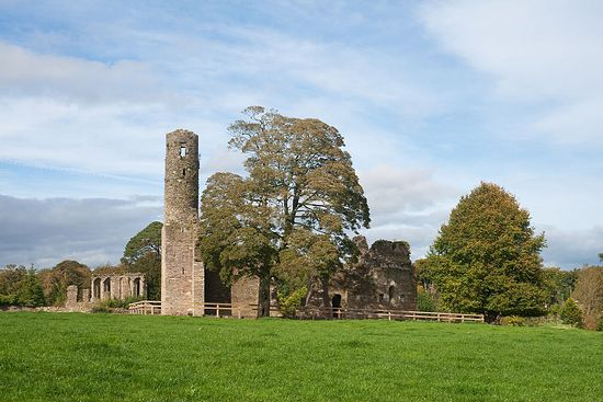 Ruins of the Augustinian abbey in Ferns (source - Wikiwand.com)