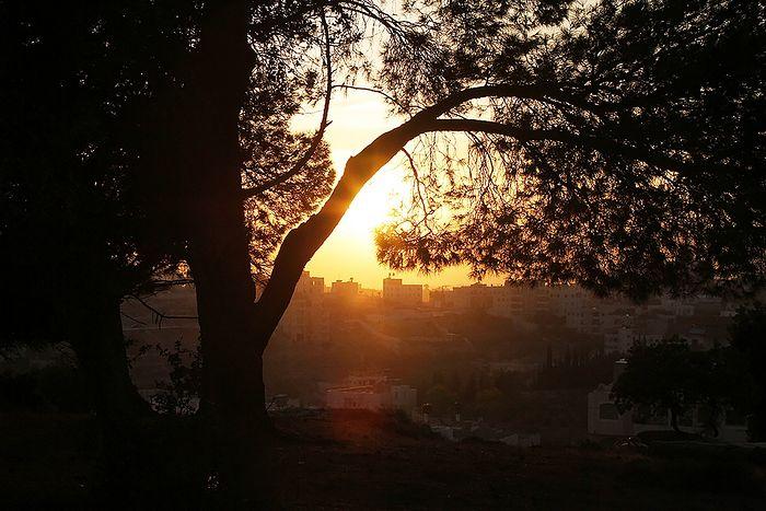 Закат. Вид из монастыря