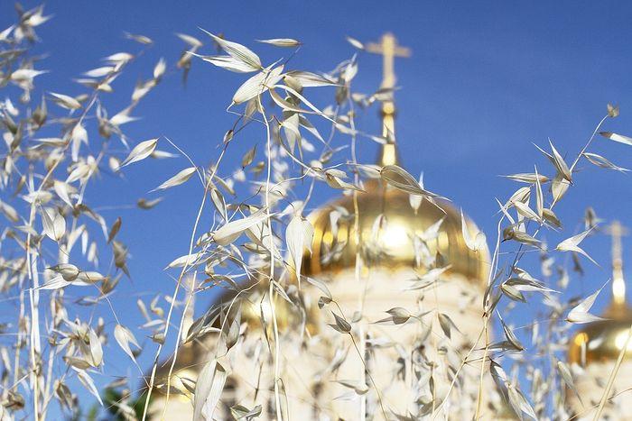Купола собора всех святых в земле Российской просиявших