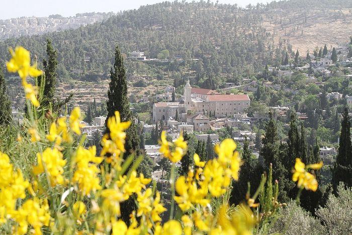 Вид из Горненского монастыря на Эйн-Карем