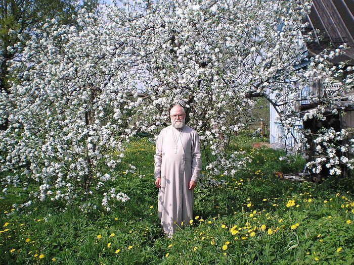 Священник Алексий Новиков