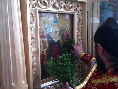 У образа чудотворной иконы Божией Матери расцвели засохшие лилии