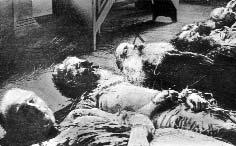 Среди жертв безбожников — епископ Ревельский Платон. Январь 1919 г.