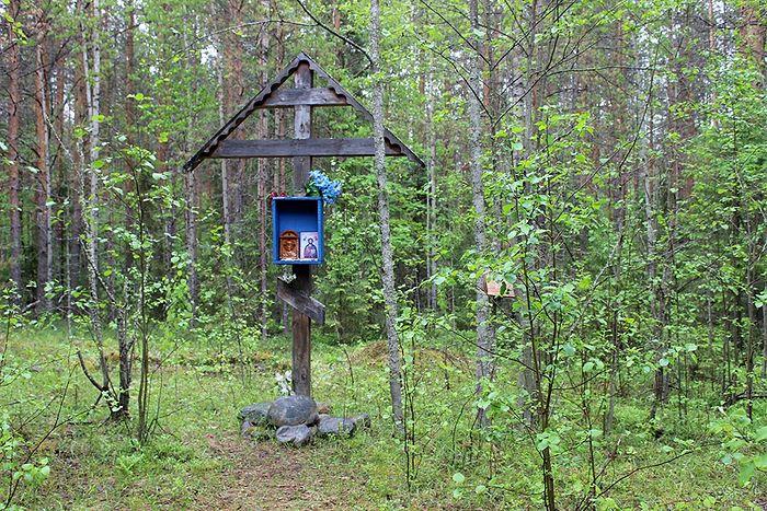 На месте предполагаемого расстрела священномученика Николая Доброумова в лесу п. Верхний Чов