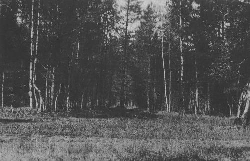 Поросенков Лог. Фотография Н. Соколова 1919 г.
