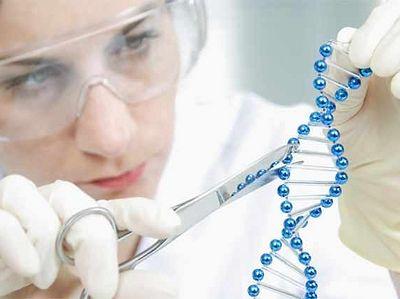 О доверии генетической экспертизе так называемых «екатеринбургских останков»