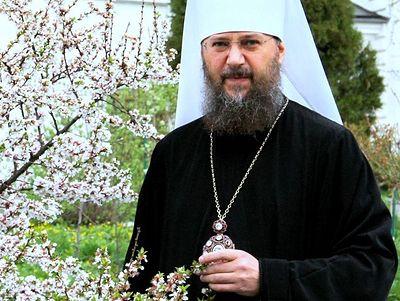 Духовные советы митрополита Антония (Паканича): 20 вопросов о боли, любви, смерти, страданиях и верности