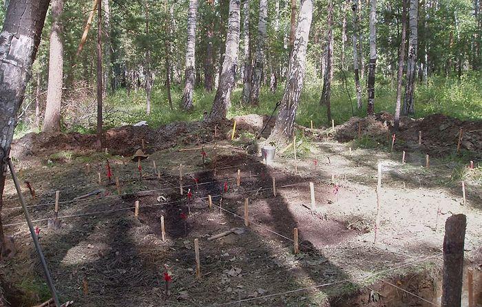 Раскопки 2007 г.