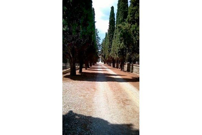 Центральная аллея некрополя в Салониках