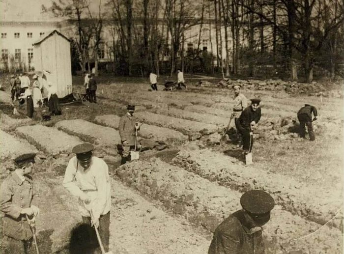 Tsar Nicholas II and his attendants at work in the garden. Tsarskoe Selo, 1917.