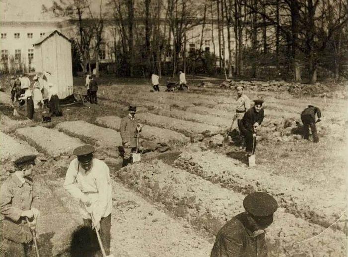 Николай II и приближенные за работой в саду. Царское Село, 1917 г.