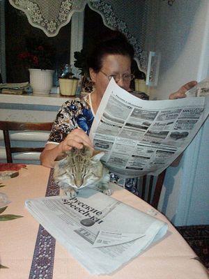 Мама с нашим котом Степой на кухне