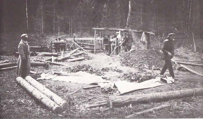 Поисковые работы на Ганиной яме. Май 1919 г.